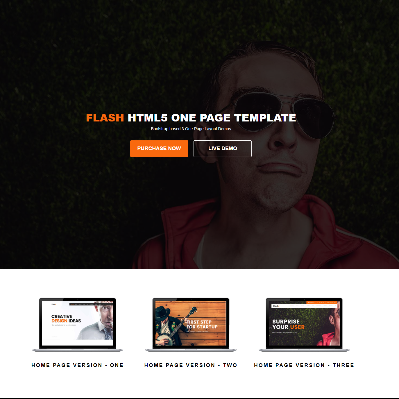 Responsive Bootstrap Flash Themes